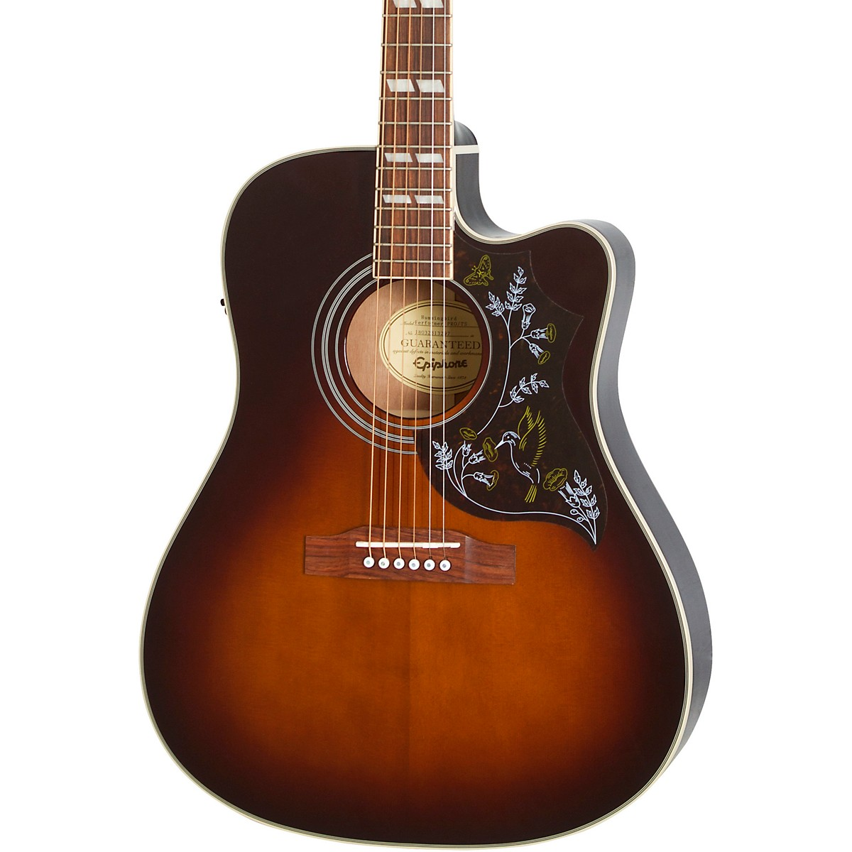 Epiphone Limited-Edition Hummingbird Performer PRO Acoustic-Electric Guitar