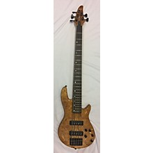 ESP Ltd H1005SE Electric Bass Guitar