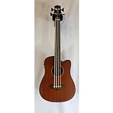 Gold Tone M-Bass / FL Acoustic Bass Guitar