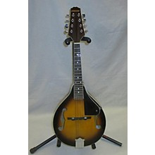 Johnson MA100 Mandolin