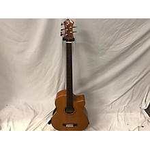 Michael Kelly MKDF5FL Dragonfly 5 String Acoustic Bass Guitar