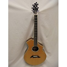Breedlove Master Class CM Custom Acoustic Electric Guitar