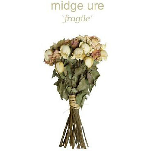 Alliance Midge Ure - Fragile