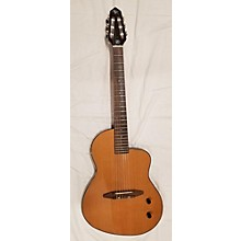 Michael Kelly N6 Rick Turner Classical Acoustic Electric Guitar