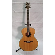 Cort NTL-20 Acoustic Guitar