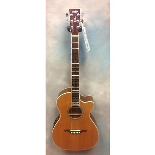 Wechter Guitars NV-5413CE Acoustic Electric Guitar