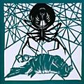 Alliance Okkervil River - Wake and Be Fine/Weave Room Blues thumbnail