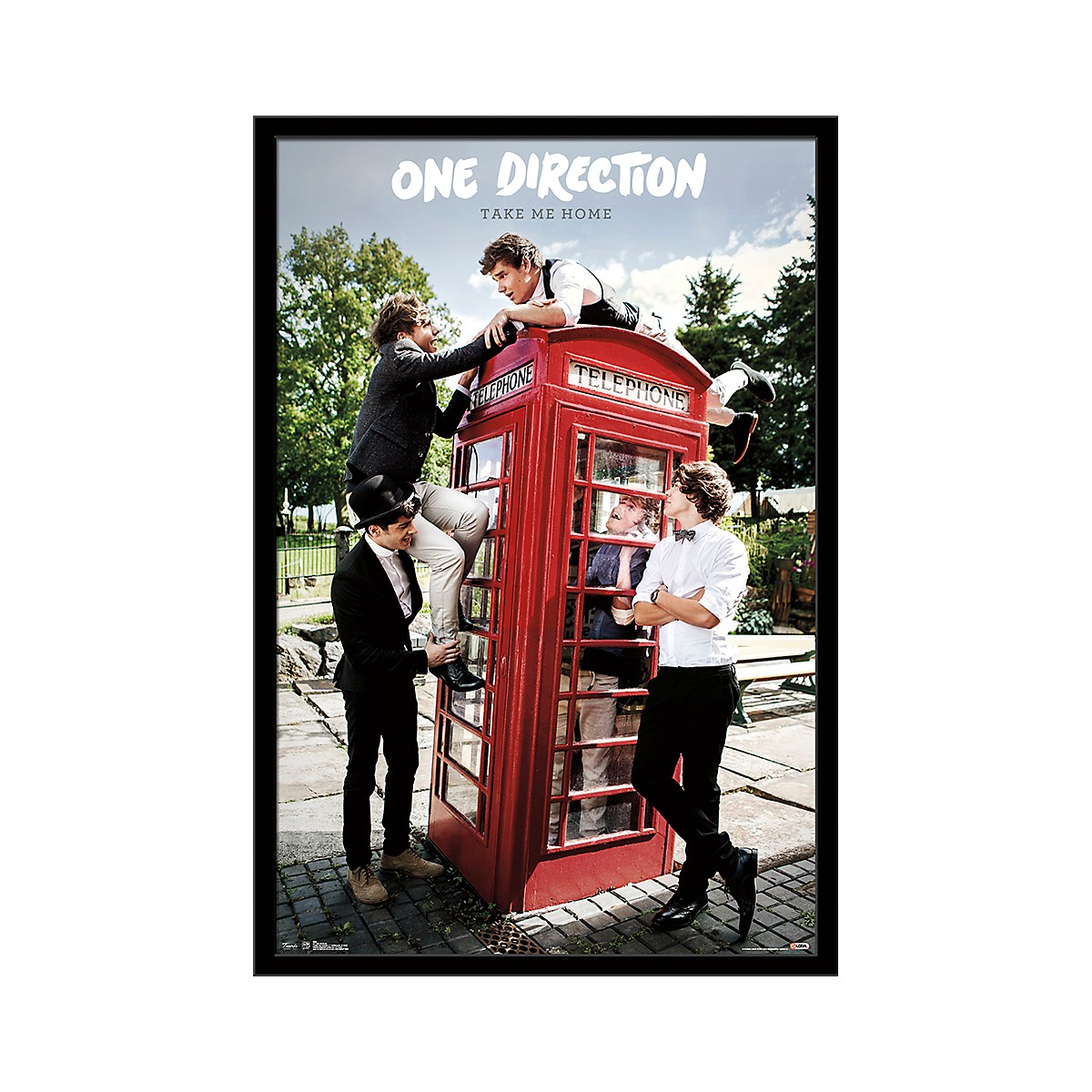 Trends International One Direction - Take Me Home Poster