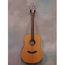 Breedlove Passport D20 FS Acoustic Guitar