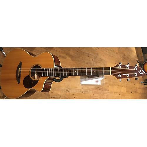 Breedlove Passport PLUS C250/SBE Acoustic Electric Guitar