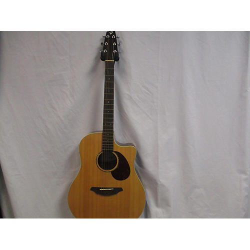 Breedlove Passport PLUS D250/SB Acoustic Electric Guitar