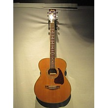Ibanez Pc25wcnt3u01 Acoustic Guitar