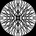 Alliance Pfirter - Procyon thumbnail