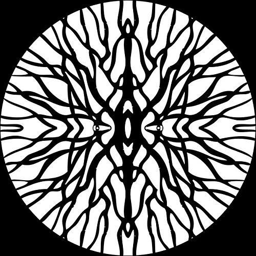 Alliance Pfirter - Procyon