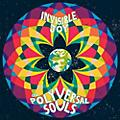 Alliance Polyversal Souls - Invisible Joy thumbnail