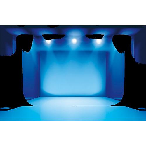 Black Label Pro RaysGF 5 gal. Professional Light Density, Camera-Friendly, Glycerin-Free Fog Fluid