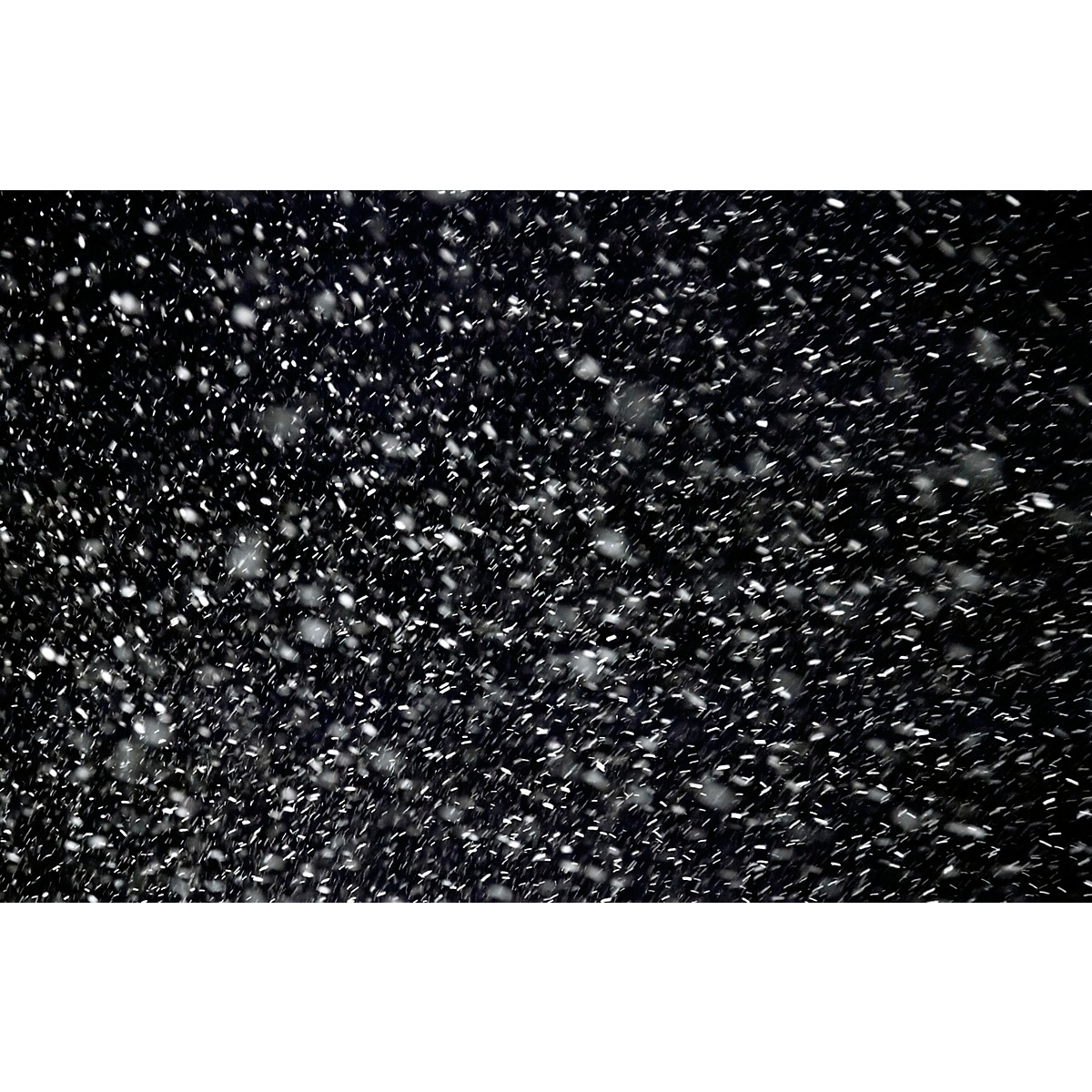 Black Label Pro Snow 55 gal. Professional Dry Snow Water-Based Effect Fluid