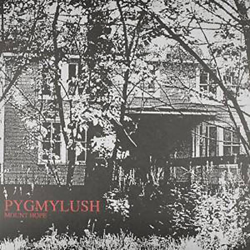 Alliance Pygmy Lush - Mount Hope