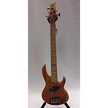 ESP RB-1005 Electric Bass Guitar