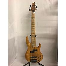 ESP RB1006 Electric Bass Guitar