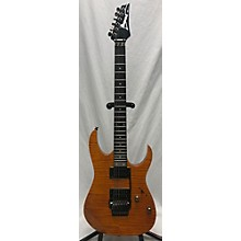 Ibanez RG320FM Electric Guitar