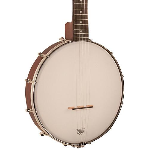 Recording King RKO-3S Open Back Banjo