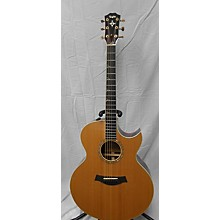 Taylor ROAD SHOW CUSTOM JUMBO Acoustic Electric Guitar