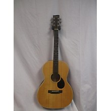 Recording King ROS G9M Acoustic Guitar
