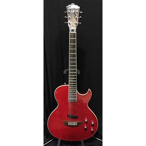 Washburn RR100 SAM HAGGAR Hollow Body Electric Guitar