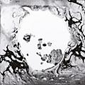 WEA Radiohead - A Moon Shaped Pool (2 LP, 180g, Download) thumbnail