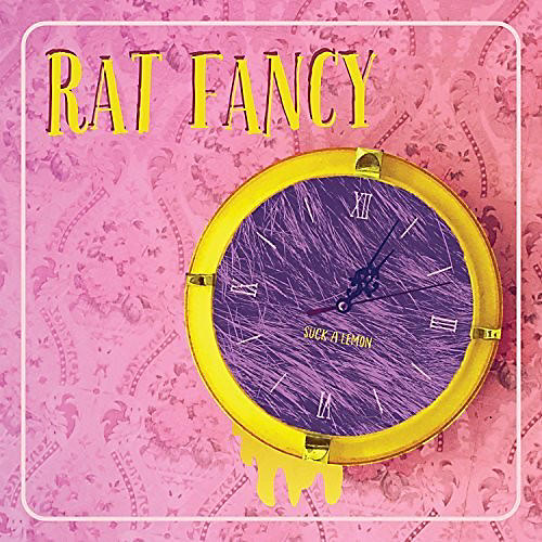 Alliance Rat Fancy - Suck A Lemon