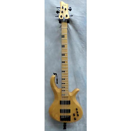 Schecter Guitar Research Riot5 Electric Bass Guitar