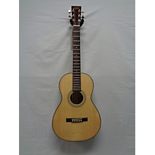 Recording King Rp10 Acoustic Guitar