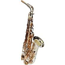 Sax Dakota SDA-1000 SS Professional Alto Saxophone