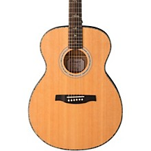 SE TE55 Acoustic-Electric Guitar Abaco Green
