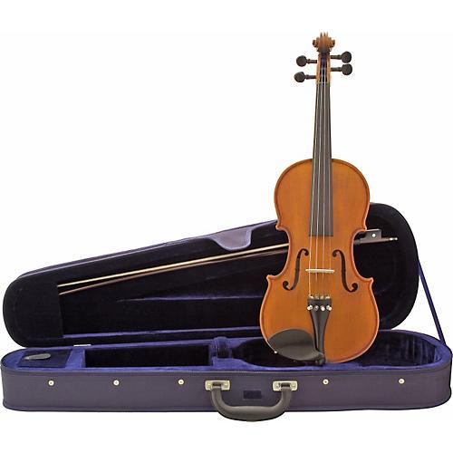 Florea Secal Violin Outfit