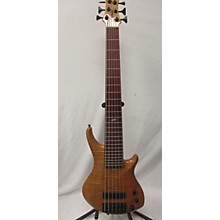 Roscoe Skb 3006 Electric Bass Guitar
