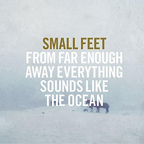 Alliance Small Feet - From Far Enough Away Everything Sounds Like