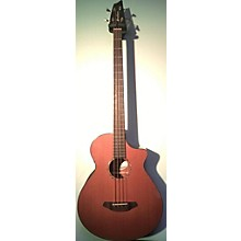 Breedlove Solo Bass Acoustic Bass Guitar