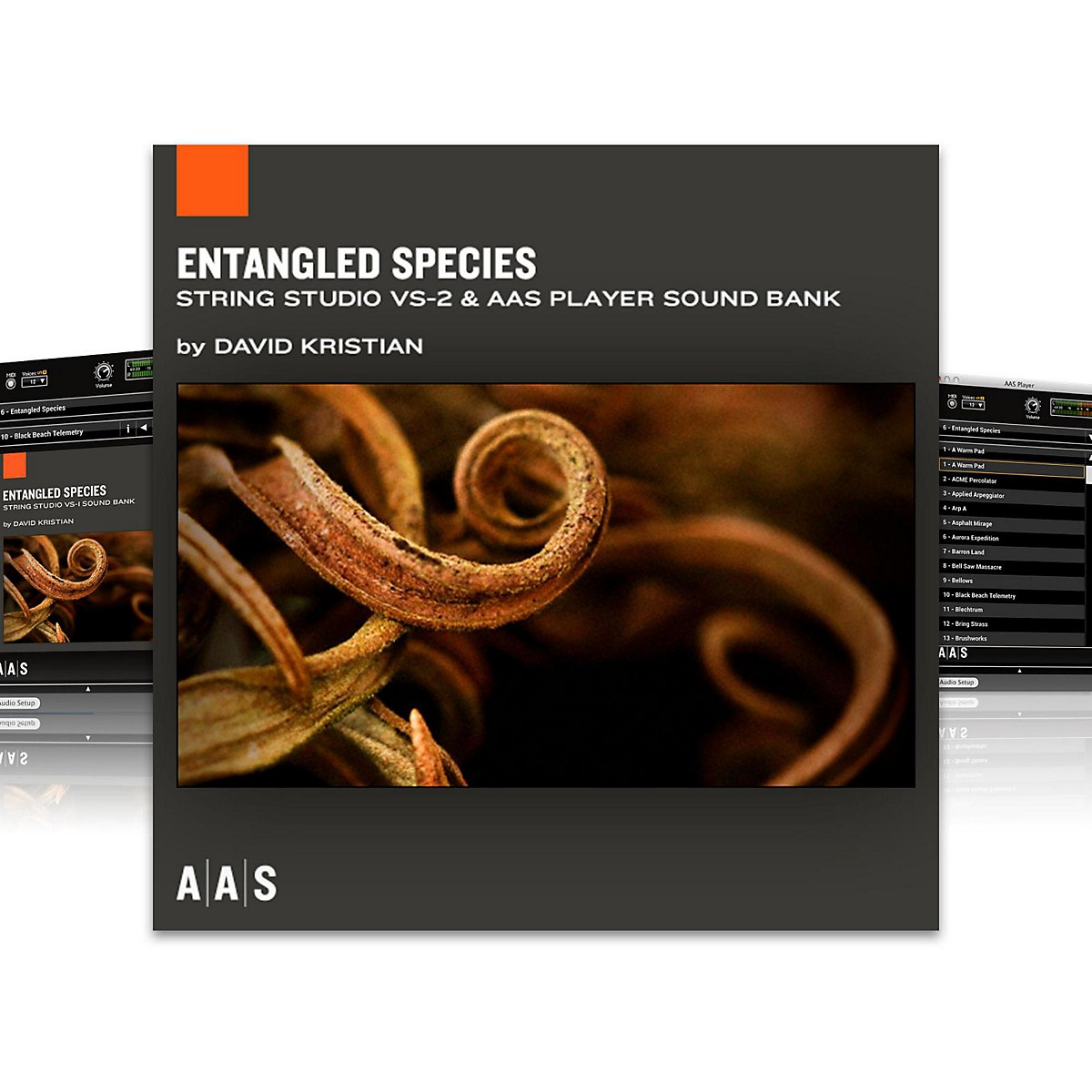Applied Acoustics Systems Sound Bank Series String Studio VS-2 - Entangled Species