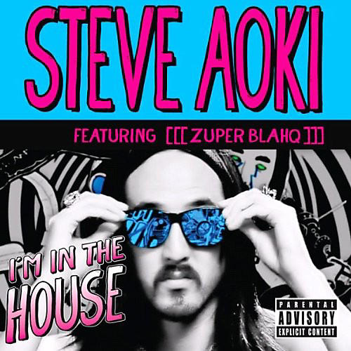 Alliance Steve Aoki - I'm in the House