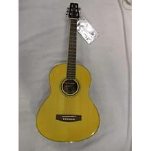 Wechter Guitars TV-1710 Acoustic Guitar