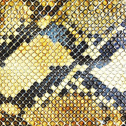 Alliance The Amazing Snakeheads - Amphetamine Ballads