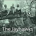 Alliance The Jayhawks - Tomorrow the Green Grass thumbnail