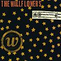 Alliance The Wallflowers - Bringing Down the Horse thumbnail