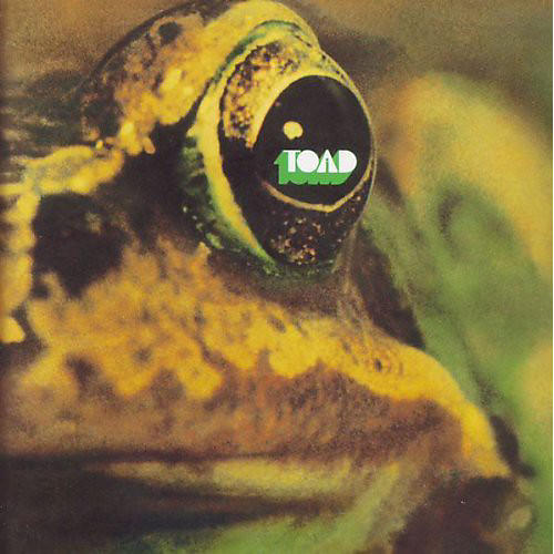 Alliance Toad - Toad