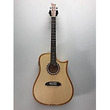 Riversong Guitars Tradition 1 Performer Acoustic Electric Guitar