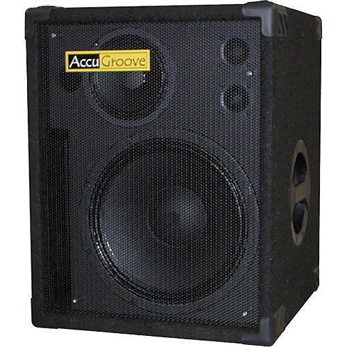 AccuGroove Tri112L Bass Cabinet