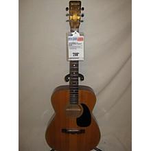 Ventura V-10 Acoustic Guitar