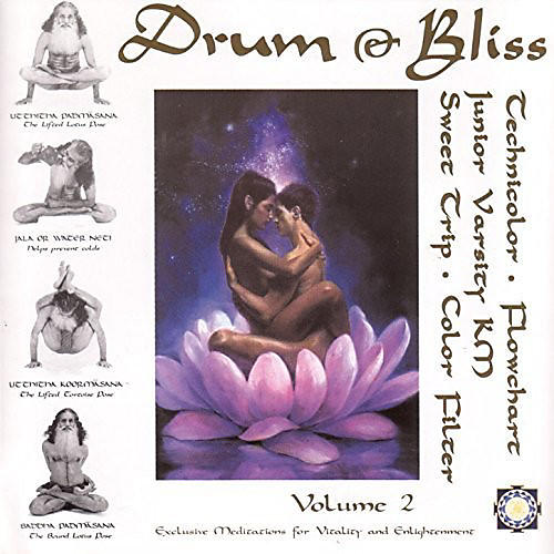 Alliance Various Artists - Drum & Bliss 2 / Various